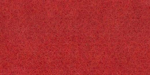 031-Scarlet